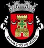 Logótipo Câmara Municipal de Mafra